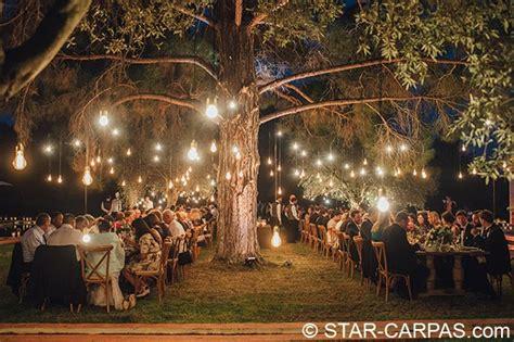 guirnaldas de bombillas  iluminacion star carpas