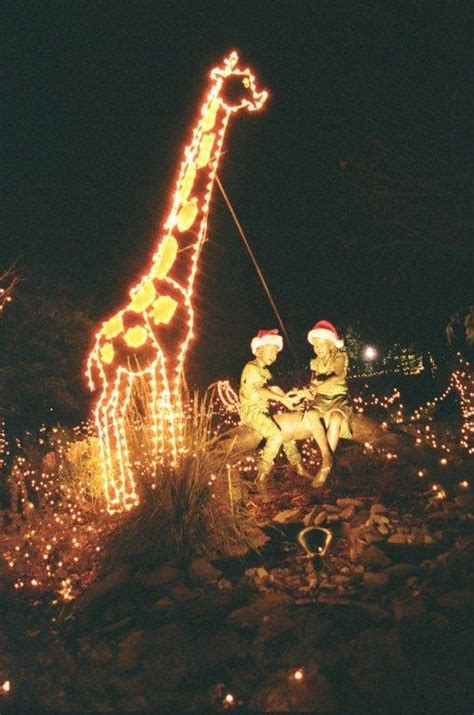 Holiday Lights Spectacular Returns To Turtle Back Zoo Nov Turtle Back Zoo Lights
