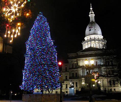 lansing christmas tree search begins michigan radio