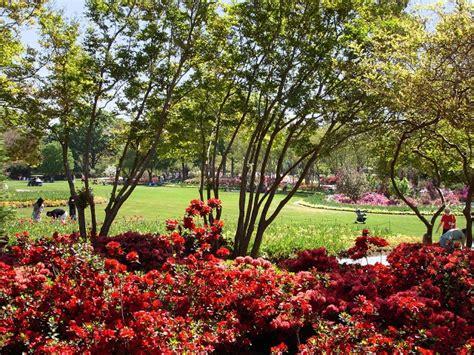 Botanical Garden Dallas Tx 113 Best All Things Dallas Arboretum Images On Dallas Arboretum Botanical Gardens
