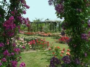 la beaujoire archives parcs et jardins fleurs