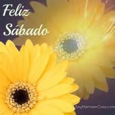 wallpaper mensajes de feliz sbado y feliz domingo con flores de feliz domingo mi amor estar 233 para preparar tu caf 233 y