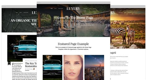 new themes in 2015 new theme release luxury beautiful responsive