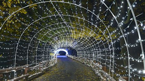 video lehigh valley zoo s winter light spectacular the