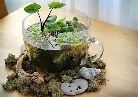 mini water garden ideas adorable diy mini garden ideas