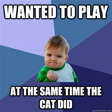 Success Cat Meme - wanted to play at the same time the cat did success kid