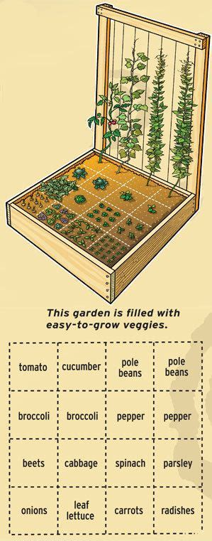 Square Foot Gardening Layout Plans How To Plan Your Square Foot Garden The Great Outdoors Pinterest