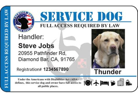 Animal Id Card Template by Service Certificate Template 2017 Exle Service