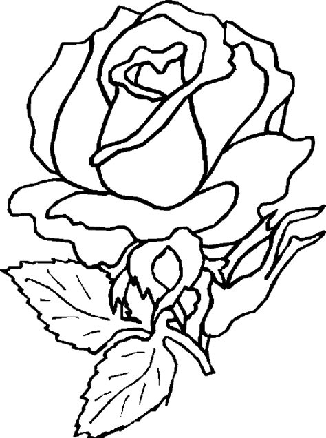 coloring pages flower rose coloring blog for kids rose flower coloring page pictures