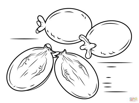 guava fruits coloring page free printable coloring pages