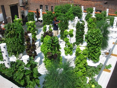 Bell Book And Candle Restaurant Rooftop Garden by Getting Greener Rooftop Revival Eluxe Magazine