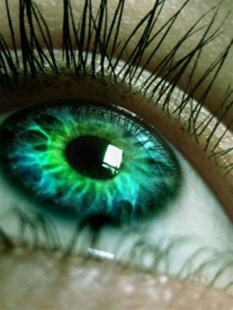beautiful green color people with green eyes images green eyes hd wallpaper and
