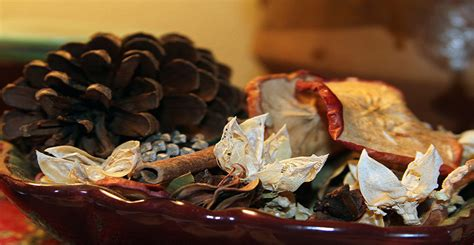 fall scents ask forget 4 diy fall scents for your home ask