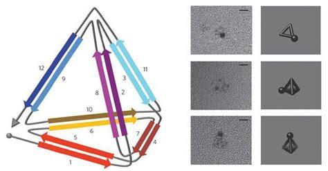 Origami Sets For - protein origami sets for designer structures