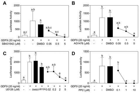 growth differentiation factor  signaling requires erk