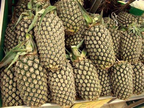 Nanas Madu By Golden Effort beez neez pineapples