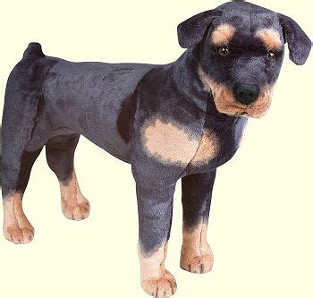 plush rottweiler rottweiler stuffed animals rottweiler plush toys doggiechecks