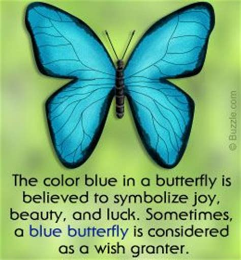 what does the color yellow in the bible 25 best ideas about blue butterfly on