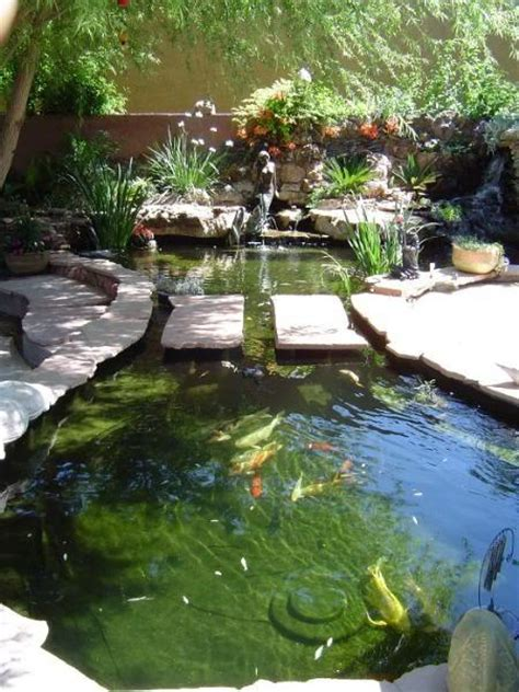 Backyard Fishing by How To Maintain The Backyard Fish Pond Temperature In