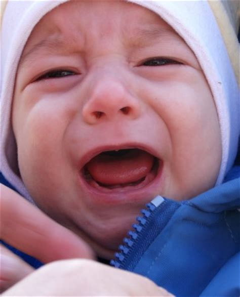baby teething baby teething symptoms 10 signs of a teething baby