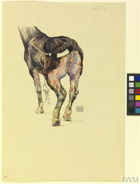 Mustard Gas Mustard Gas Sketch To Illustrate The Effect Of Mustard Gas On Horses Iwm 4943
