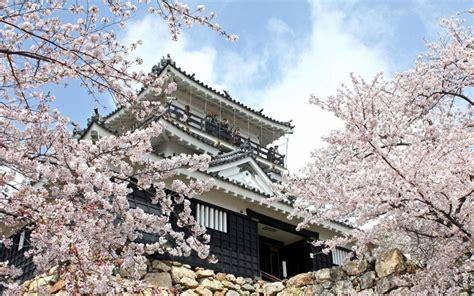 best in japan purple pen in japan tourist spot in hamamatsu hamamatsu