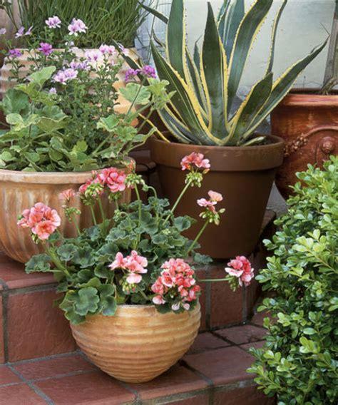 Patio Plants Ideas by 40 Small Garden Ideas Small Garden Designs