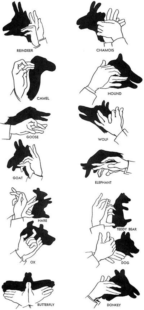 How To Make Paper Shadow Puppets - bored with these shadow puppets
