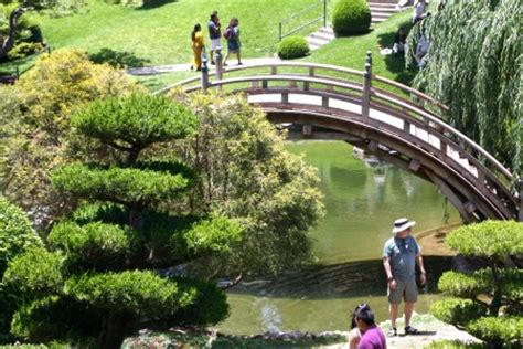 Huntington Gardens Free Day by The Huntington Library Top 10 Things To See And Do The