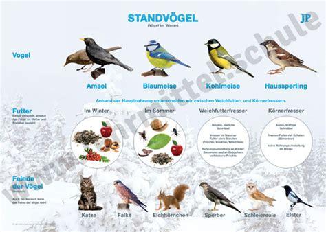 winterv gel in deutschland 4094 zugv 246 gel standv 246 gel wandkarte lehrtafel sachkunde