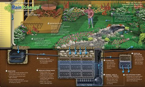 how to design an irrigation system at home home design