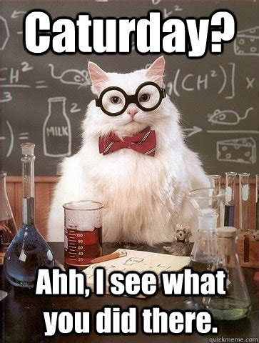 Ahh Meme - caturday ahh i see what you did there chemistry cat