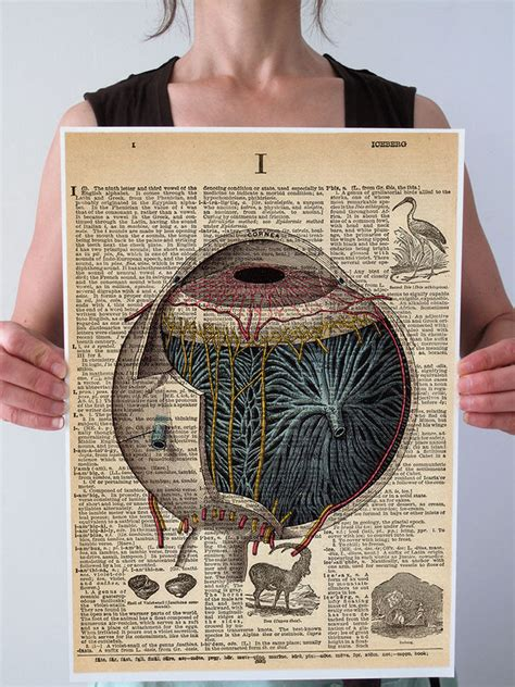 Eyeball L Vintage by Eyeball Eye Vintage Anatomy Dictionary Print