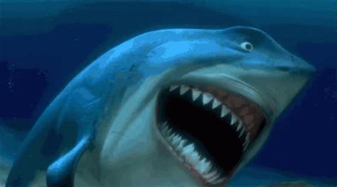 emoji film haai bruce nemo gif bruce nemo shark discover share gifs