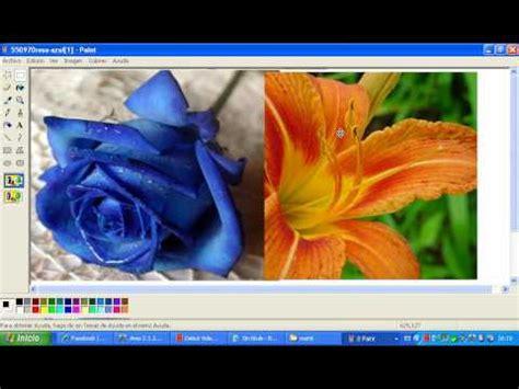 poner dos imagenes juntas latex como poner 2 fotos en paint youtube