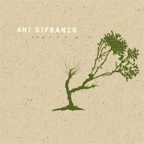 Im To See Ani Difranco by 27 Best Images About I Admire On