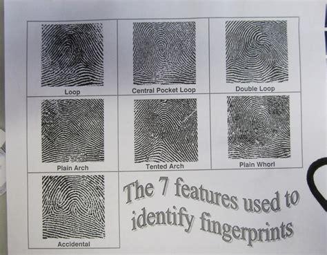 pattern types of fingerprints science ehs may 2013
