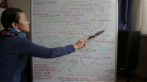belajar bahasa inggris  kepala wajah mata telinga bahu