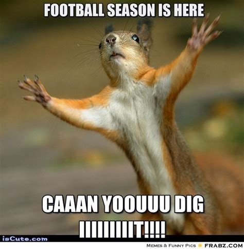 Football Season Meme - football season is here stop squirrel meme generator