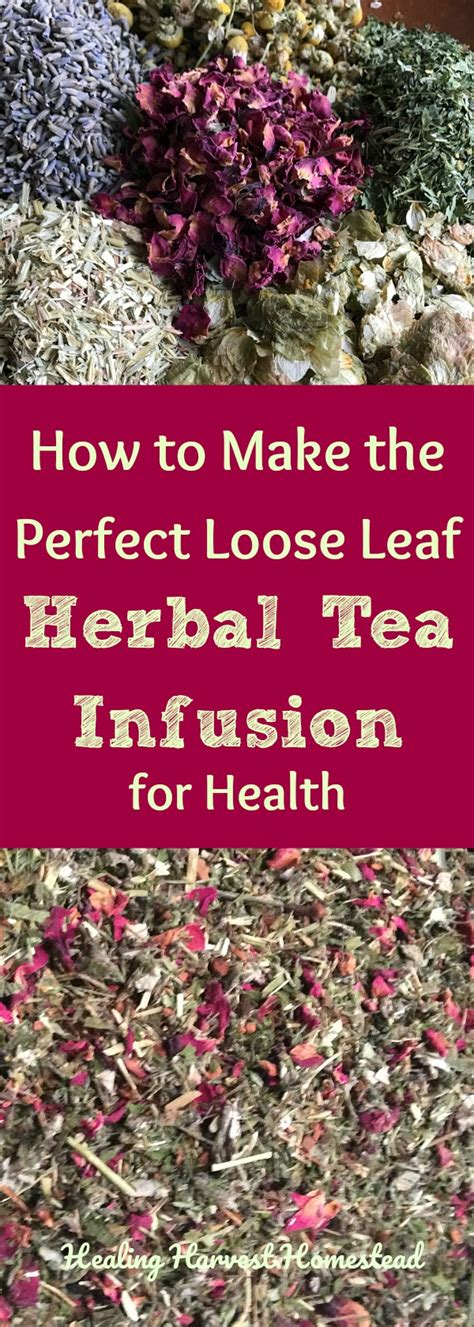 8 Tea Infusions You To Try by How To Make An Herbal Tea Infusion Leaf Herbal Tea
