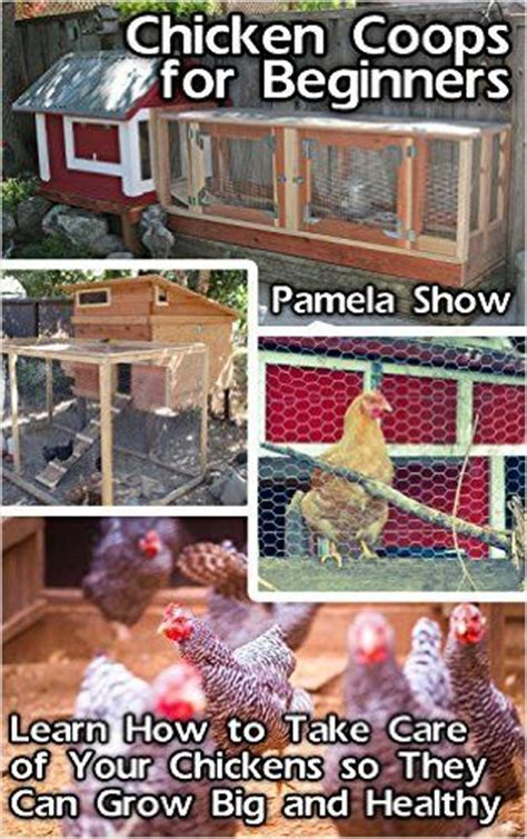 how to care for backyard chickens amazon com chicken coops for beginners learn how to take