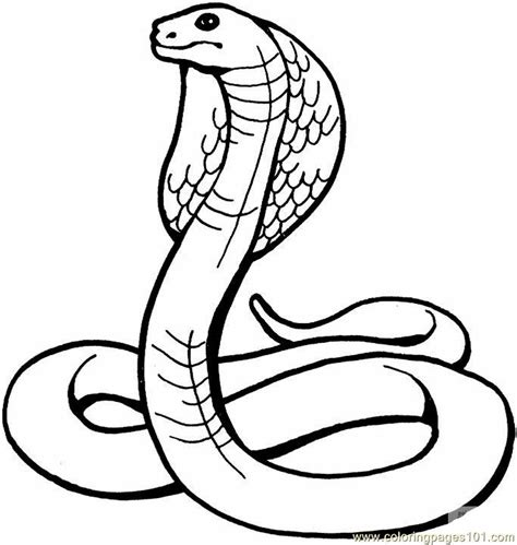 printable reptile images coloring pages king cobra reptile gt snake free