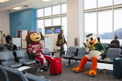 osu doodle poll new disney parks tv spot features ohio state