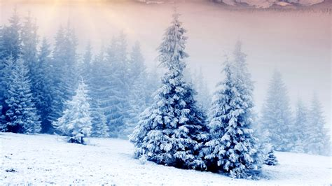 for winter winter free desktop wallpapers for hd widescreen and mobile