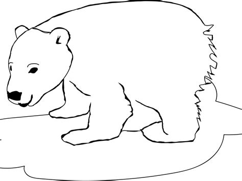 polar bear coloring pages 03 mcoloring