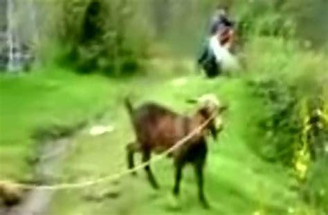usher goat usher vs goat