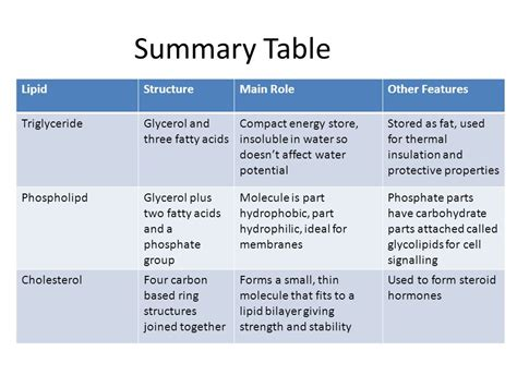 carbohydrates two important functions lipids and carbohydrates ppt