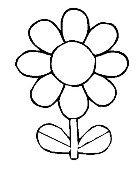 clipart of flowers coloring pages white flower clipart best