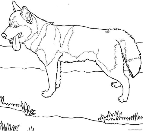 dog coloring page preschool fire dog coloring page preschool template colouring pages