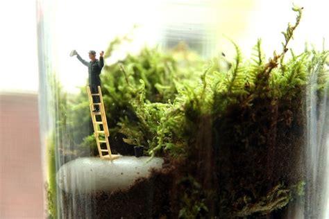 tiny world terrariums by twig terrariums